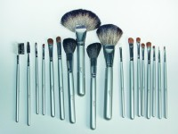 Star's Cosmetics Professional Make Up Brush Set (Pack Of 18)