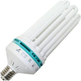 Ecolux E14 ES 40 Base 45 W CFL Bulb (White)