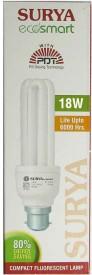 Ecosmart 18 W CFL Bulb
