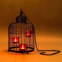 Shaz Living Cage Lantern Black Iron 3 - Cup Tealight Holder (Black, Pack Of 1)