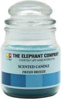 The Elephant Company Yankee Jar Fresh Breeze Candle (Blue, Pack Of 1)