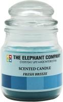 The Elephant Company Yankee Jar Fresh Breeze Candle (Blue, Pack Of 1)