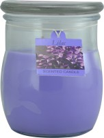 Sixthsense 10 Oz Jar Candle Scented Candle (Purple, Pack Of 1)