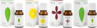 Aroma Treasures Lavender Oil, Tea Tree Oil, Peppermint Oil And Lemon Oil (Set Of 4)