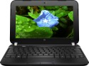 HP Mini 110-4108TU Laptop (2nd Gen Atom Dual Core/ 2GB/ 320GB/ DOS) (10.00 Inch, Glossy Black, 1.38 Kg)