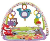 Fisher Price 3-in-1 Musical Activity Gym (Multicolor)