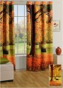 Swayam Digitally Printed Cosmo Fashion Door Curtain - CRNDUH4APBSRFE9B
