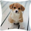Amore Decor Small Puppy Cushions Cover - Pack Of 1