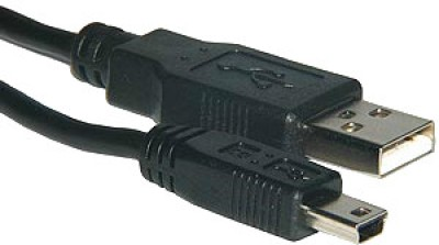 Buy Amzer 82927 Mini USB Data Sync and Charge Cable - 1ft: Data Cable