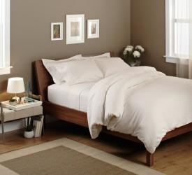 Elegant Bedware Cotton Plain Single Bedsheet
