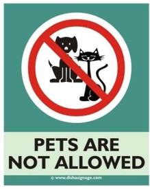 Dishasignage Pets-Are-Not-Allowed Emergency Sign