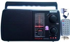 Deltan USB Prince FM Radio