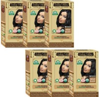 Indus Valley 100% Certified Organic Botanical Indus Black- 6 Set- One Touch Pack Hair Color (Indus Black)