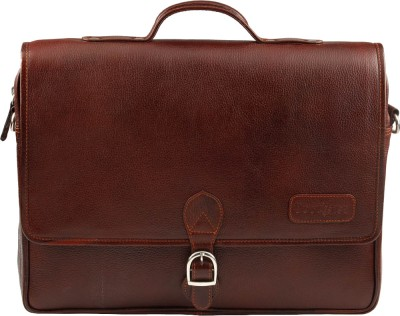 Buy Tortoise Messenger Bag: Hand Messenger Bag