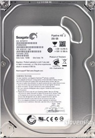 Seagate Pipeline HD.2 (ST3250412CS) 250GB Desktop Internal Hard Disk