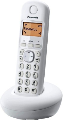 Panasonic KX-TG210 Cordless Landline Phone (White)
