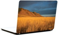 Pics And You Amazing Nature 15 3M/Avery Vinyl Laptop Decal (Laptops And MacBooks)