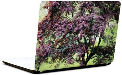 Pics And You Bloom And Blossom 6 3M/Avery Vinyl Laptop Decal (Laptops And MacBooks)