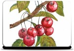 Merchbay Cherries Skin I Artist Seema Hooda