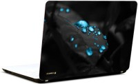 Pics And You Blue Drops On Leaf Vinyl Laptop Decal (Laptops, Macbooks)