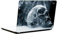 Pics And You Skull With Smoke Vinyl Laptop Decal (Laptops And Macbooks)