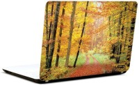 Pics And You In The Woods 2 3M/Avery Vinyl Laptop Decal (Laptops And MacBooks)