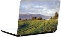 Pics And You Amazing Nature 12 3M/Avery Vinyl Laptop Decal (Laptops And MacBooks)