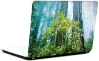Pics And You Under The Trees 6 3M/Avery Vinyl Laptop Decal (Laptops And MacBooks)