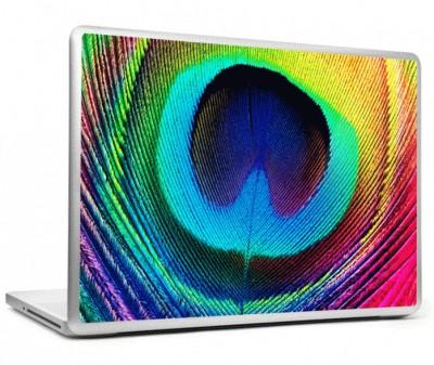 Laptop Colors Colorful Vinyl Laptop