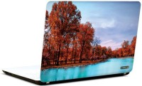 Pics And You Love In Nature 3M/Avery Vinyl Laptop Decal (Laptops And MacBooks)