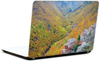 Pics And You Amazing Forest 4 3M/Avery Vinyl Laptop Decal (Laptops And MacBooks)