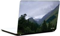 Pics And You Nature Themed 401 3M/Avery Vinyl Laptop Decal (Laptops And MacBooks)