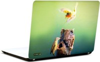 Pics And You Bird On Flight 3M/Avery Vinyl Laptop Decal (Laptops And MacBooks)