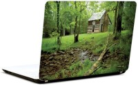 Pics And You Green And Gorgeous 8 3M/Avery Vinyl Laptop Decal (Laptops And MacBooks)