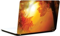 Pics And You Dazzling Dusk 4 3M/Avery Vinyl Laptop Decal (Laptops And MacBooks)
