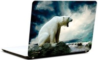 Pics And You Growling Bear 3M/Avery Vinyl Laptop Decal (Laptops And MacBooks)