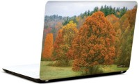 Pics And You Shades Of Nature 8 3M/Avery Vinyl Laptop Decal (Laptops And MacBooks)
