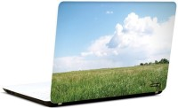 Pics And You Nature Themed 430 3M/Avery Vinyl Laptop Decal (Laptops And MacBooks)