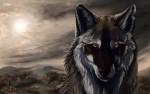 Eclipse Wolf