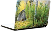 Pics And You Incredible Nature 8 3M/Avery Vinyl Laptop Decal (Laptops And MacBooks)