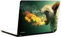Pics And You Fire And Cat Vinyl Laptop Decal (Laptops And Macbooks)