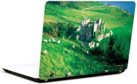 Pics And You Green And Gorgeous 6 3M/Avery Vinyl Laptop Decal (Laptops And MacBooks)