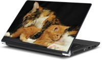 EzyPRNT Cute Kittens Pet Animal (15 To 15.6 Inch) Vinyl Laptop Decal 15 (Dell Laptop, HP Laptop, Lenovo Laptop, Acer Laptop, Samsung Laptop, Toshiba Laptop, Apple Laptops)