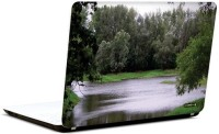 Pics And You Nature Themed 434 3M/Avery Vinyl Laptop Decal (Laptops And MacBooks)