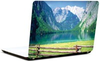 Pics And You Green And Gorgeous 19 3M/Avery Vinyl Laptop Decal (Laptops And MacBooks)