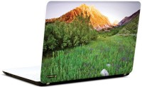 Pics And You Amazing Forest 3 3M/Avery Vinyl Laptop Decal (Laptops And MacBooks)