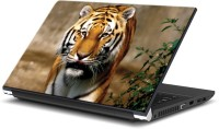 EzyPRNT Tiger's Royal Moves Wildlife (15 To 15.6 Inch) Vinyl Laptop Decal 15 (Dell Laptop, HP Laptop, Lenovo Laptop, Acer Laptop, Samsung Laptop, Toshiba Laptop, Apple Laptops)