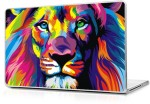Automers Skin of Lion Painting 17 inches to 17.3 inches Reusable