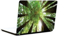 Pics And You Under The Trees 12 3M/Avery Vinyl Laptop Decal (Laptops And MacBooks)