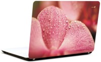 Pics And You Petals And Dews Vinyl Laptop Decal (Laptops And Macbooks)